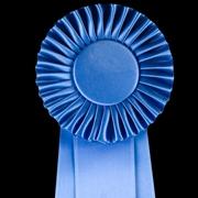 מדליית ראול ולנברג הוענקה לפרופ' דינה פורת