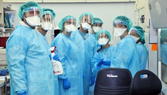 """סטודנטים מתנדבים בבית חולים שיבא (צילום: בי""""ח שיבא)"""