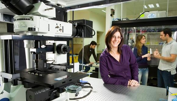 לעבוד ולחקור באוניברסיטת תל-אביב