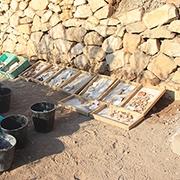 הרגלי התזונה של תושבי ירושלים בימי בית שני